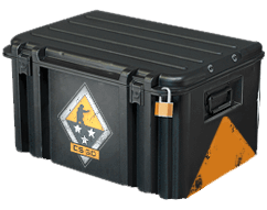 CS:GO WEAPON 3 CASE